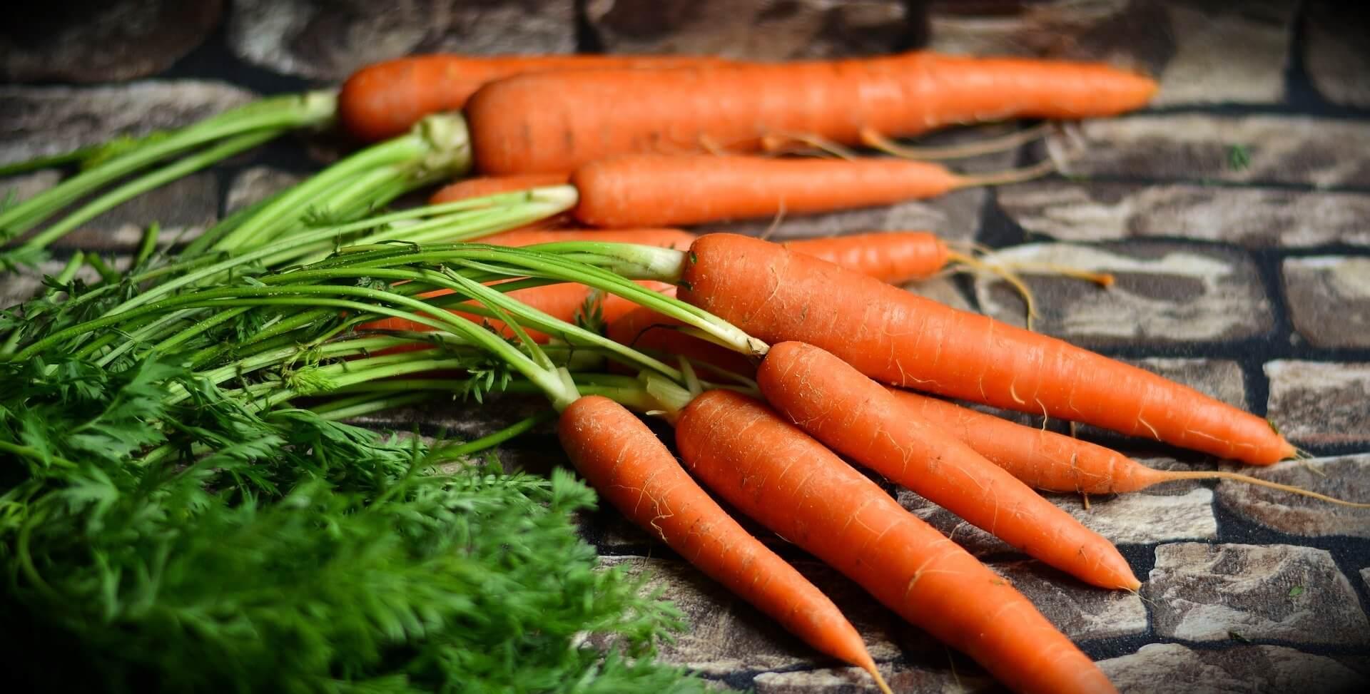 Finber-In-Foods-www.herbalvoice.lk-ආහාර වල අඩංගු තන්තු