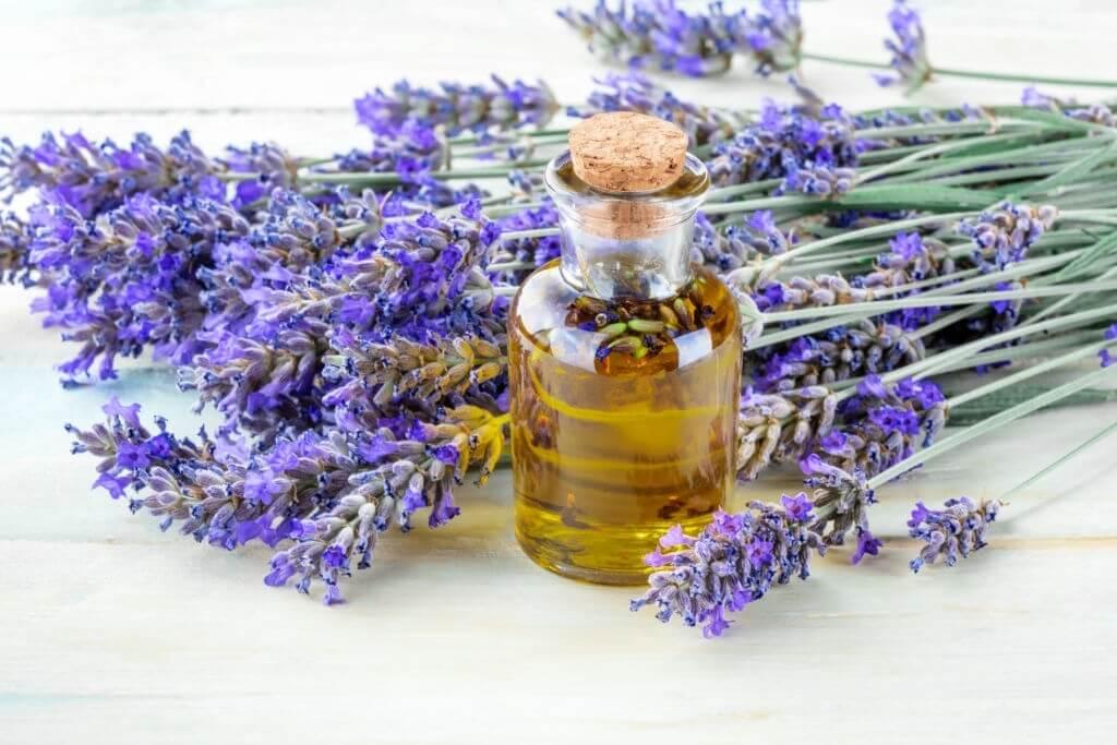 Lavender Oil- Herbal Hair oil-www.herbalvoice.lk