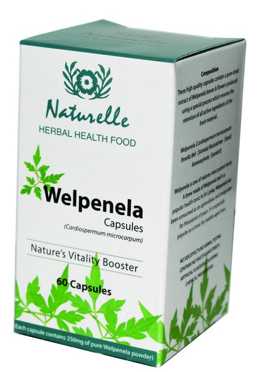 වැල් පෙනෙල -Welpenela-Love in Puff- Balloon Vine-www.herbalvoice.lk