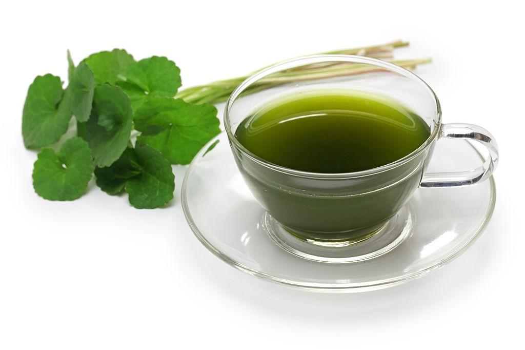 ගොටුකොළ තේ -Gotukola Tea- www.herbalvoice.lk