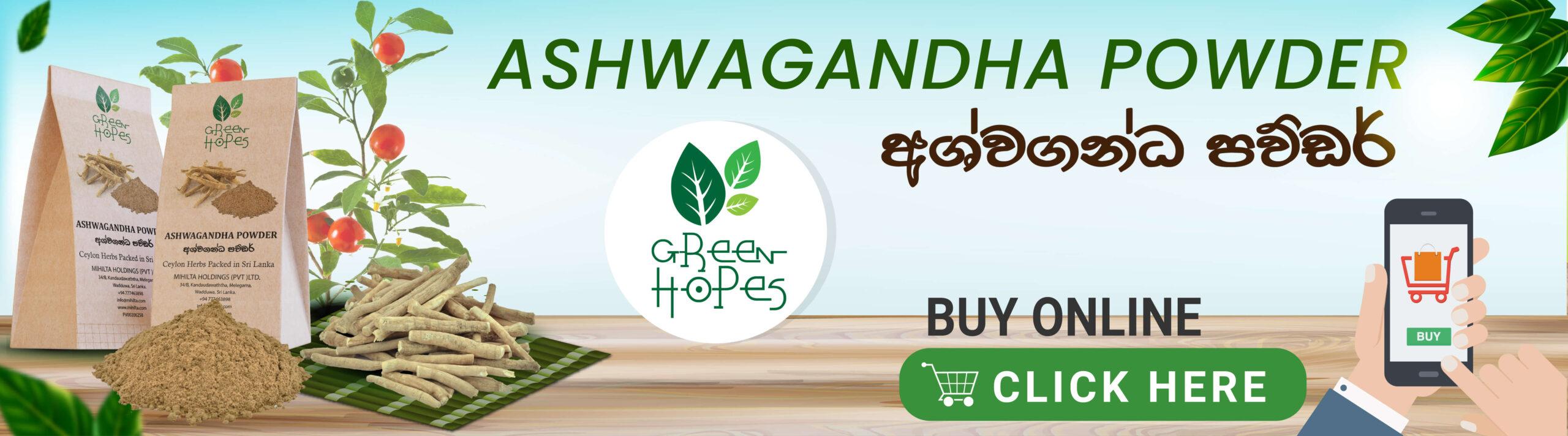 Greenhopes-